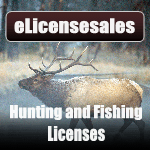Fishing & Hunting License